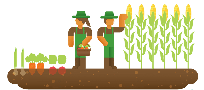 agriculture-industry-ERP