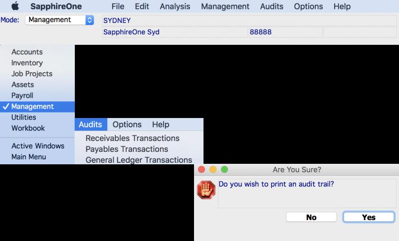 management-audit